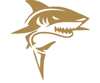 Акула 1