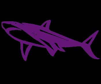 Акула 9