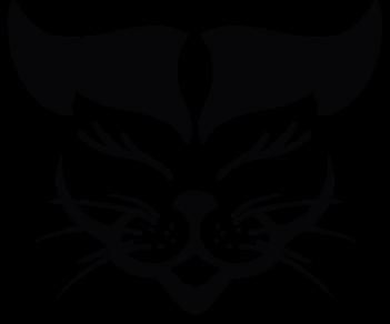 Кошка 12