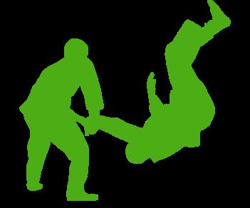 Айкидо спорт