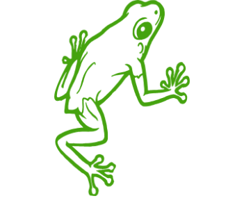 Лягушка 3