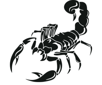 Скорпион 16