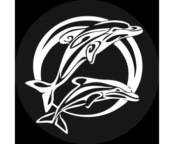 На запасное колесо дельфины 2