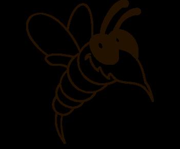 Муха Оса Пчела