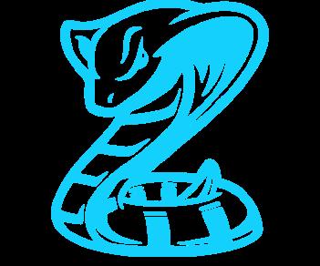 Кобра змея 2