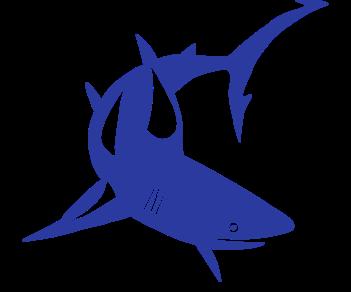 Акула хищник