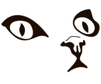 Cat 53