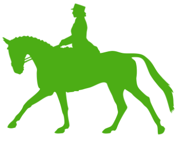 Наездница конный спорт