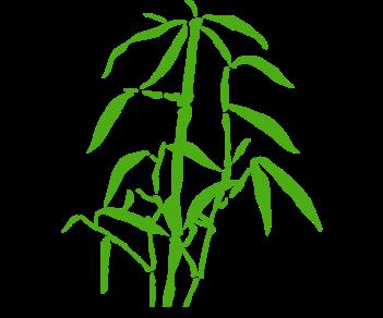 Бамбук листья