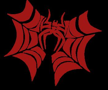 Паук сеть