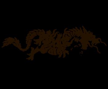 Дракон 29
