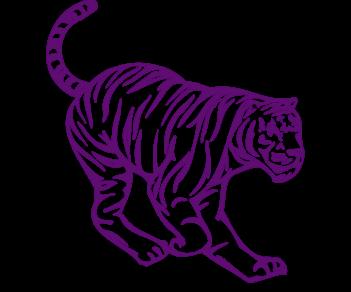 Тигр 4