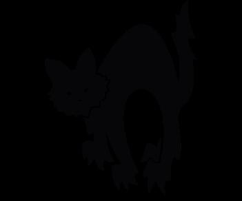 Кошка 11
