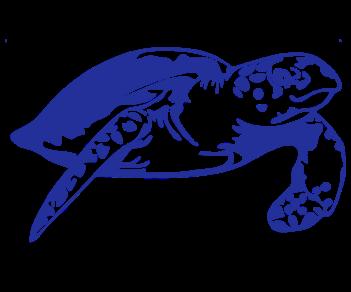Черепаха 4