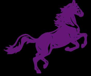 Лошадь 6