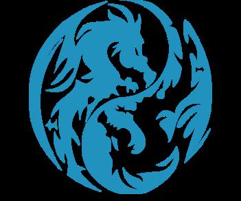 Инь янь дракон 2