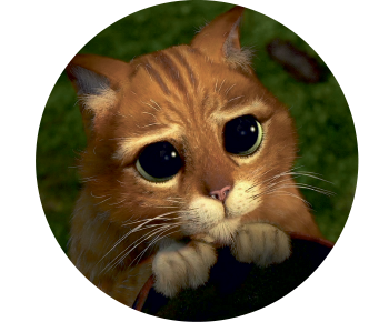 На запаску кот из Шрека