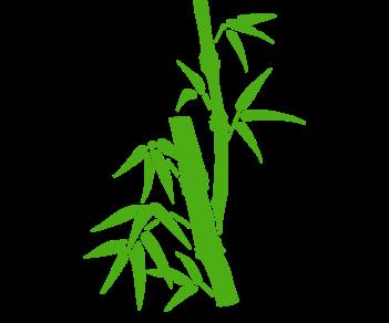 Бамбук 3