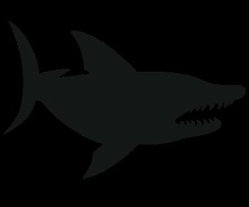 Акула большая черная