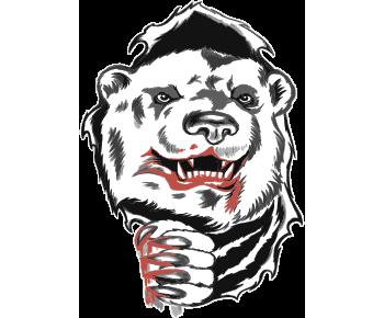 Белый медведь когти