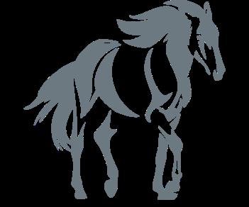 Лошадь 8