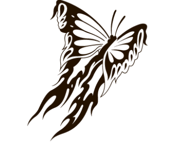 Бабочка 69