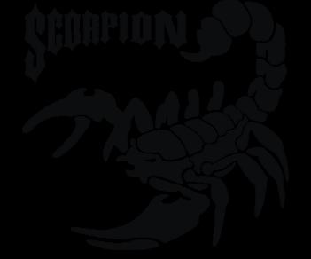 Скорпион 13