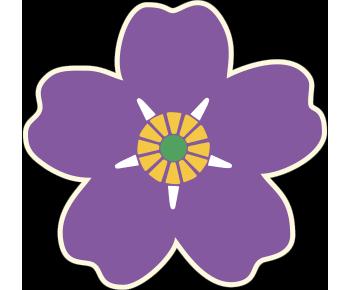 Армянская Незабудка