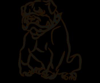 Собака боксер 2