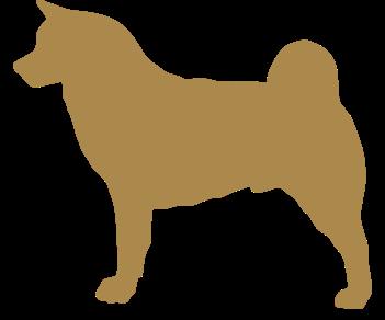 Собака акита 2
