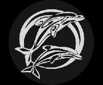 На запасное колесо дельфины 3
