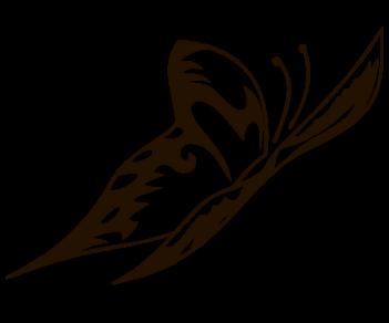 Бабочка 68