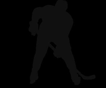 Хоккей 5