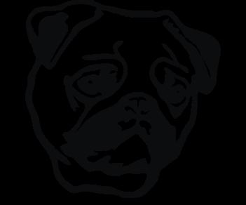 Собака мопс 2