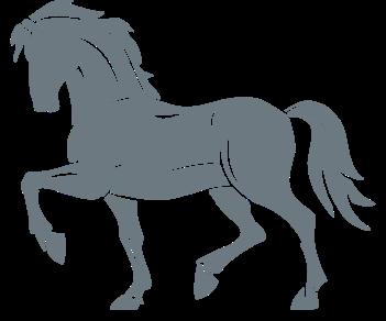 Лошадь 4