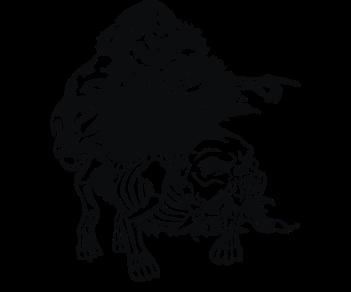 Скелет на собаке