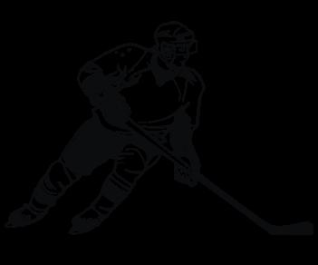 Хоккеист 3
