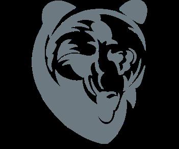 Медведь зверь