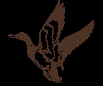 Летящая утка 2