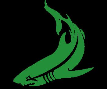 Акула 4