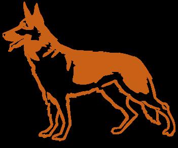 Овчарка собака