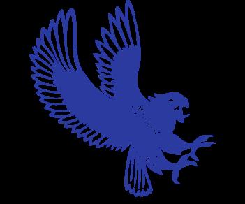 Орел нападает