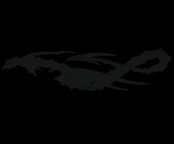 Тату дракон 2