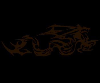 Дракон 5