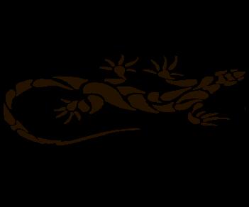 Дракон 48