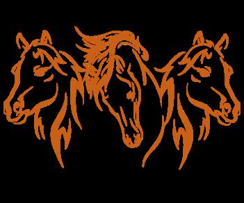 Лошади тройка