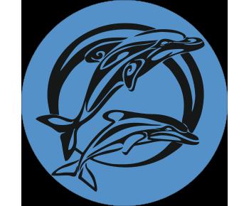 На запасное колесо дельфины