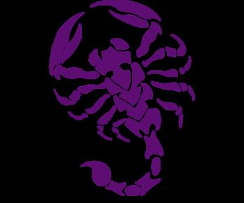 Скорпион паук 2