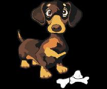 Собака такса 2