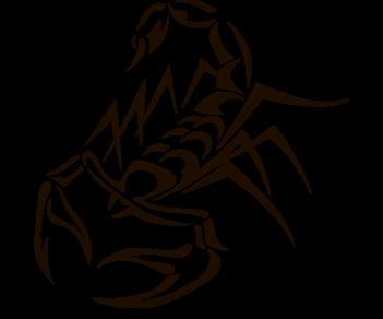 Скорпион 12
